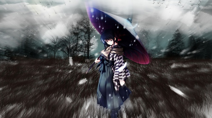 snow, umbrella, anime girls, trees, Kouzuki Kazuna, grass, Cartagra, blue eyes, blue hair, feathers