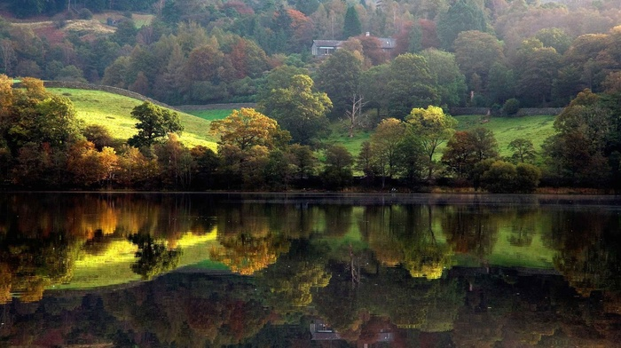 trees, nature, river, landscape, lodge, coast, forest