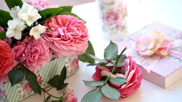 gift, roses, stunner