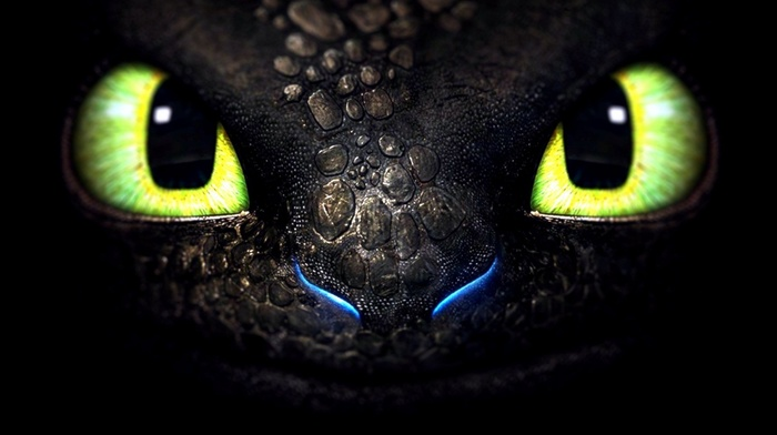 Toothless, How to Train Your Dragon, dragon