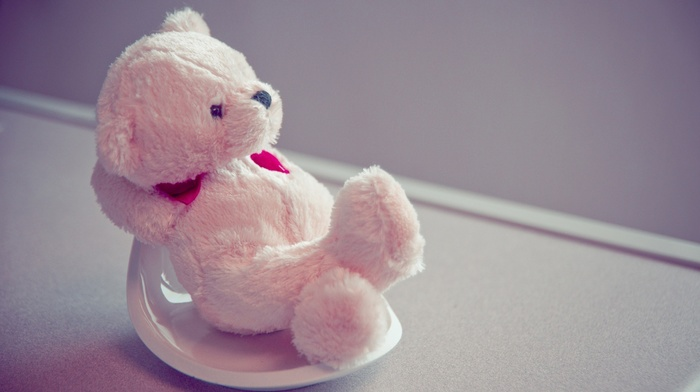 toy, sit, pink, heart, love