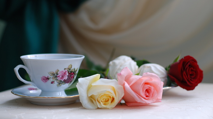 roses, cup, flowers, still life, holiday, tea, table