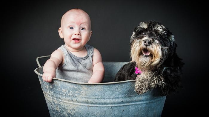 mood, dog, children, boy