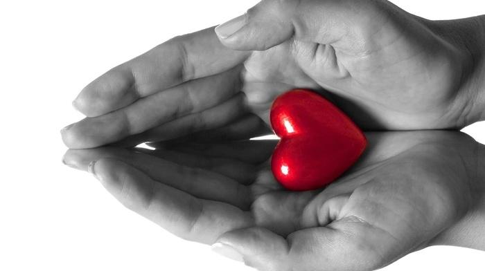 3D, love, heart, hands