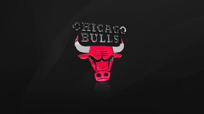 black, sports, NBA, basketball, Chicago