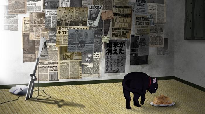 Darker than Black, Mao, cat