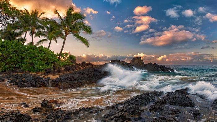природа, Гавайи, maui, прибой, облака, hawaii, камни, пальмы, тихий океан, Мауи, скалы, тропики