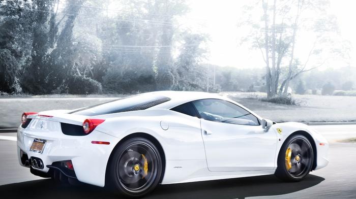 Italy, road, white, cars, trees, Ferrari, speed, rear view