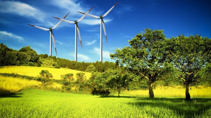 sky, grass, nature, trees, grassland, clouds