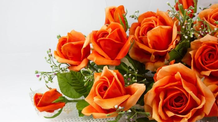 orange, color, flowers, bouquet, roses