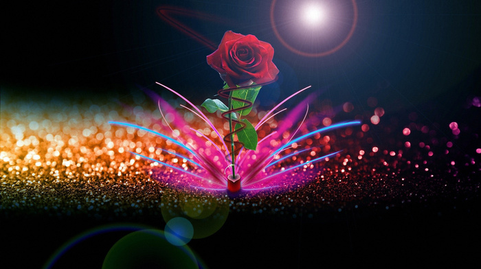 rose, creative, abstraction, 3D, flower