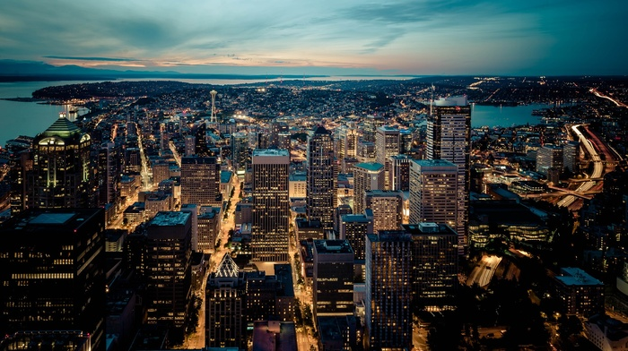 cityscape, night, city, lights