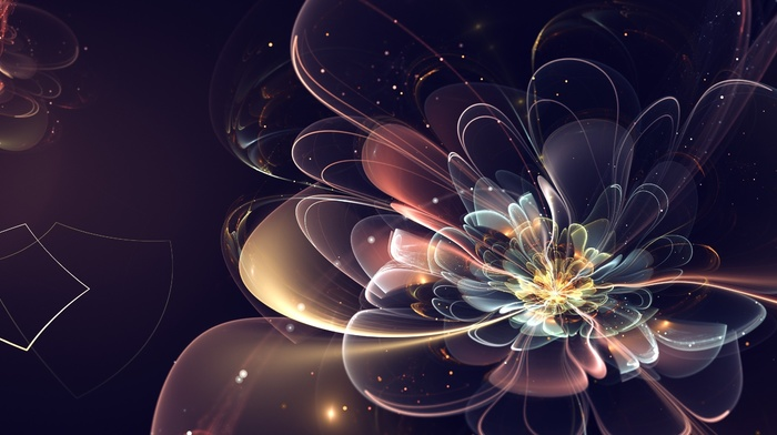 abstraction, flower, 3D
