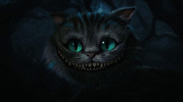 кот, фильмы