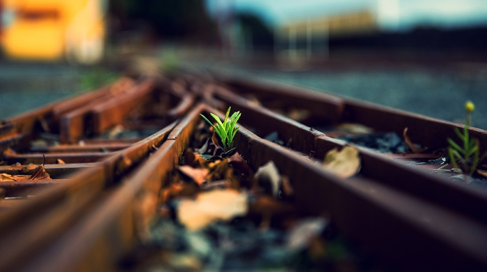 depth of field, railway, macro