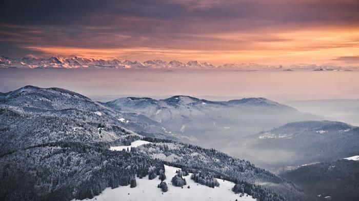 деревья, Альпы, горы, зима, снег, туман, природа, вечер, холмы