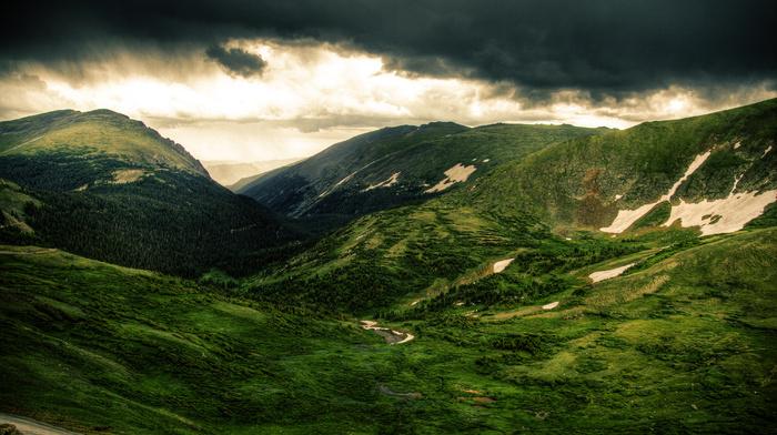 grassland, hills, green, trees, landscape, nature, mountain