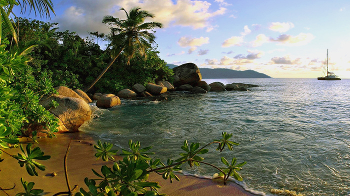 yacht, sea, stones, nature, surf, palm trees
