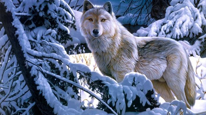 animals, wolf, snow, winter, forest, art