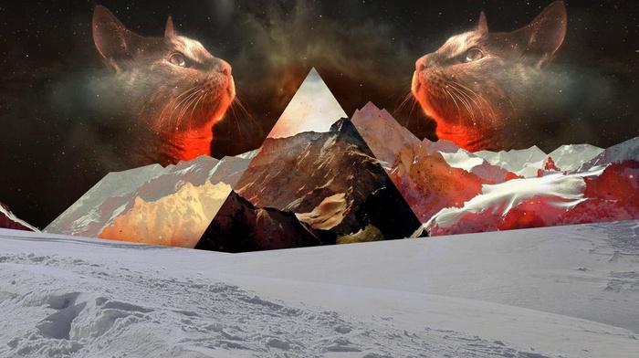 triangle, nature, cat, snow, mountain, polyscape