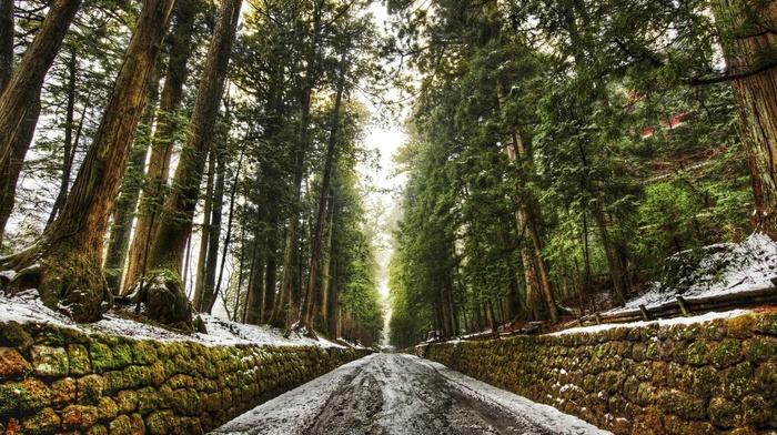 дорога, снег, стены