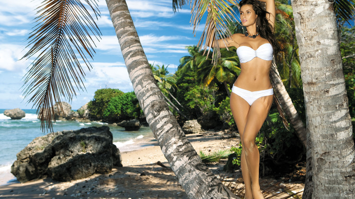 brunette, posing, beautiful, girl, beach, ocean, girls, model, palm, resort, figure