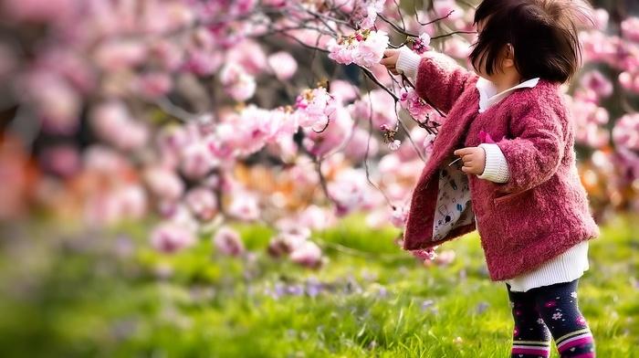 girlie, sakura, stunner, spring, cherry, color