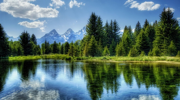 river, trees, mountain, nature, landscape, HDR