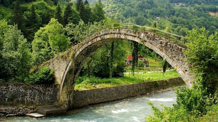 greenery, sky, water, forest, lodge, beauty, bridge, river, nature
