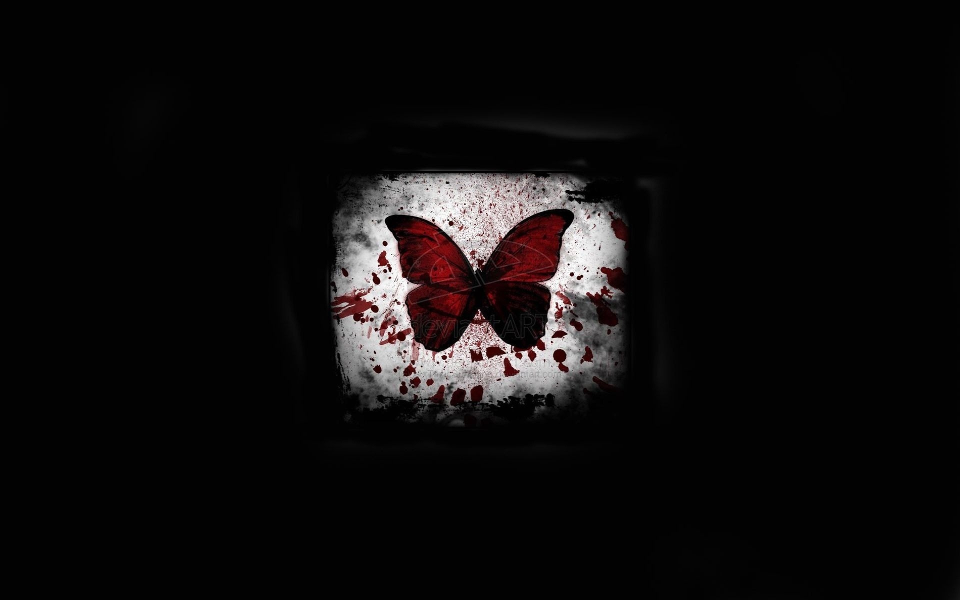 Black Background Light Blood Minimalism Butterfly