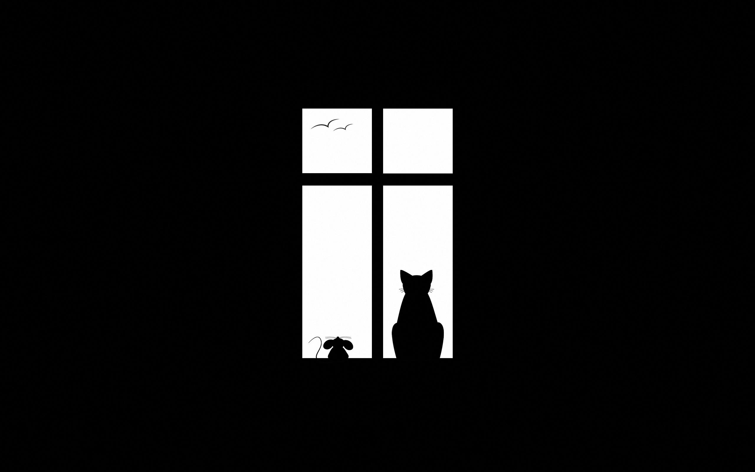 кот окно обои для рабочего стола № 570306  скачать