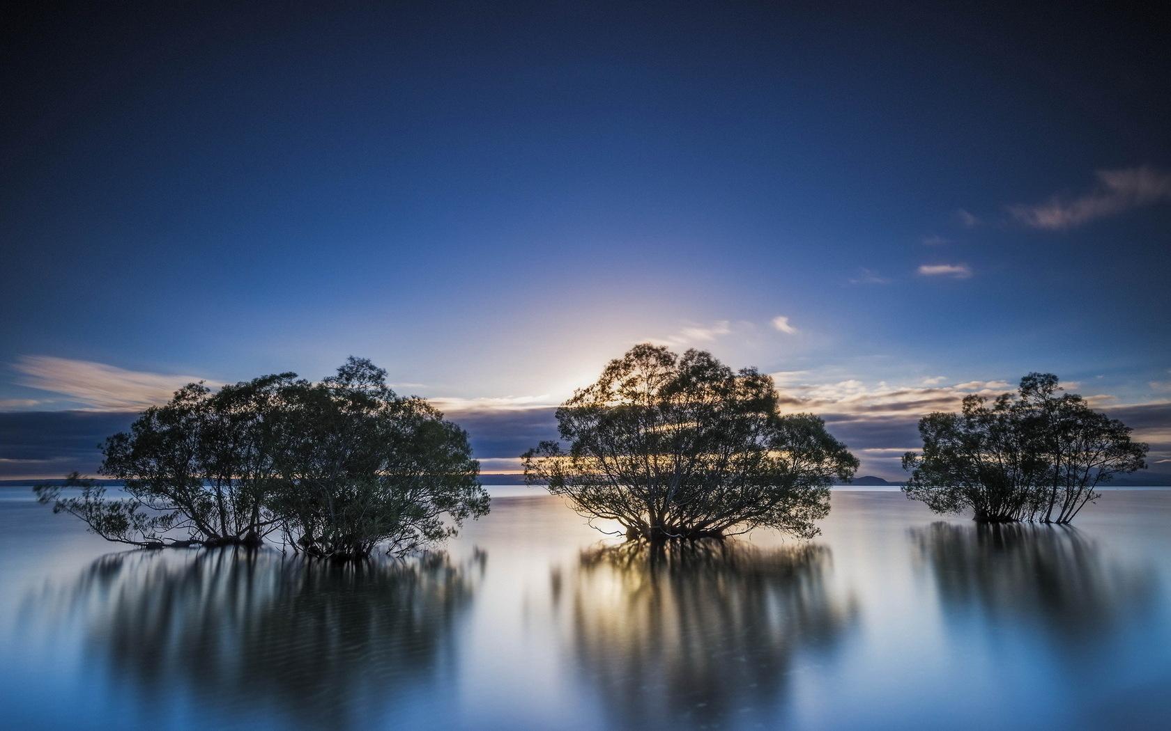 озеро, природа, пейзаж, деревья