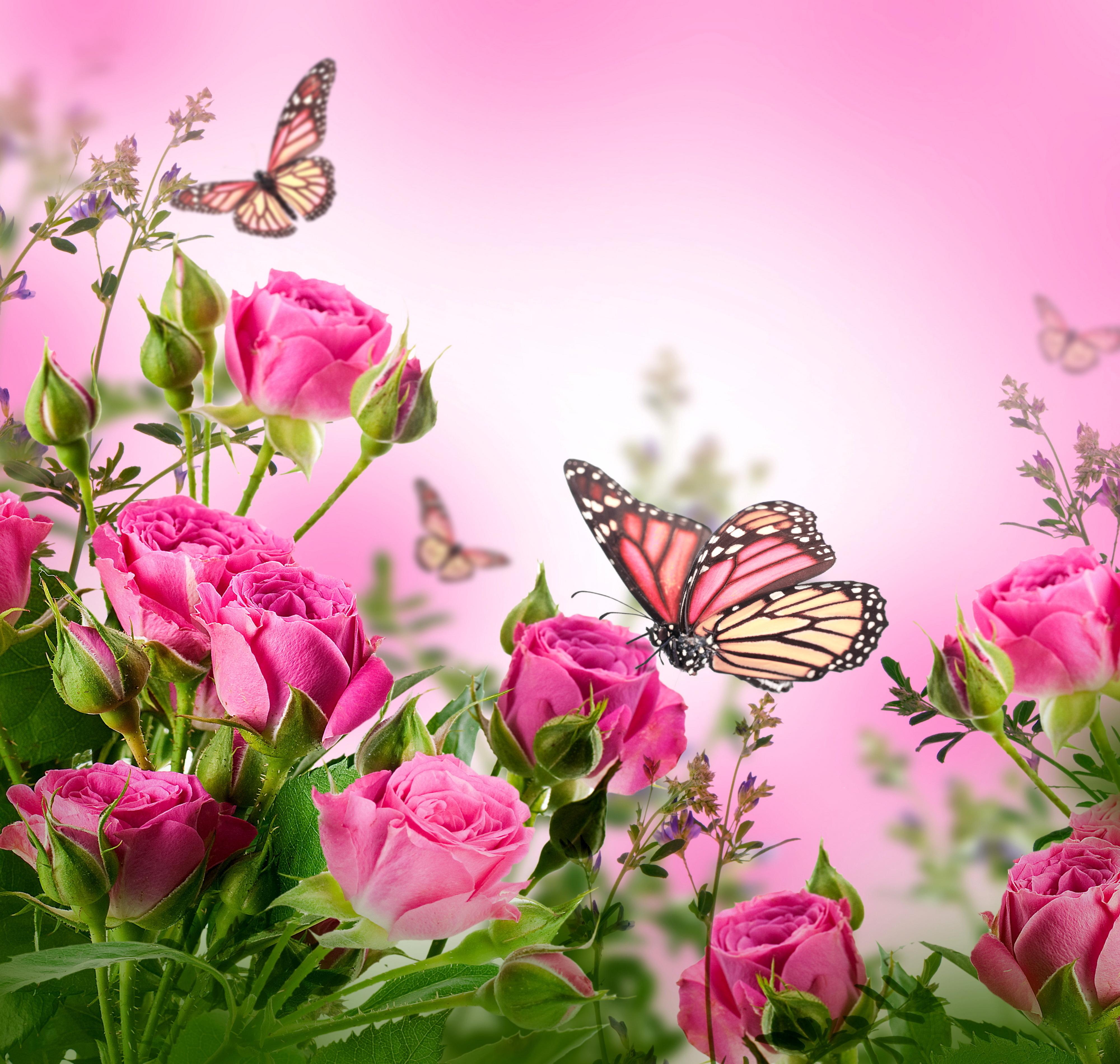 Картинки красивые цветы со смыслом (37 фото) Прикольные 49