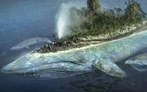 остров, море, кит, животные