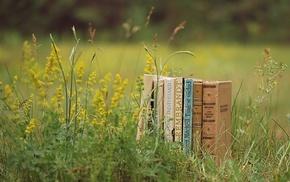 glade, greenery, books, stunner, grass