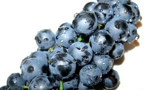 grapes, delicious, wine