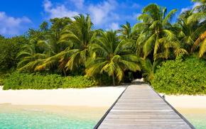landscape, coast, beach, nature, water