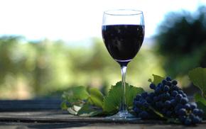 girl, wine, delicious