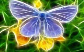 butterfly, 3D