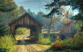 road, autumn, nature, bridge, forest