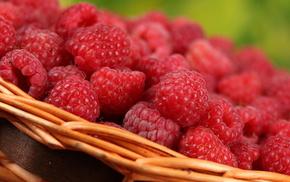 macro, berries, delicious