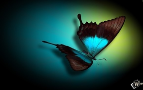 3D, butterfly, background