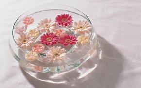 flowers, water, vase