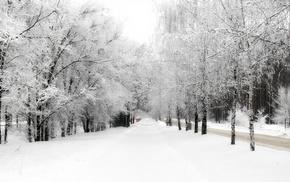 winter, snow, nature, trees