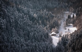 winter, snow, lodge, nature, forest