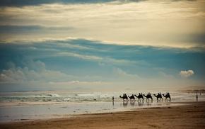 sand, sea, horizon, sky, coast