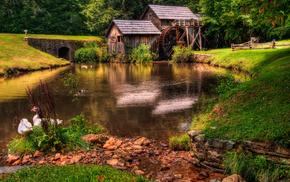 трава, Природа, река, пейзаж, лес, зеленая