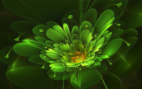 3D, flower, abstraction