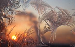 window, stunner, dawn, patterns