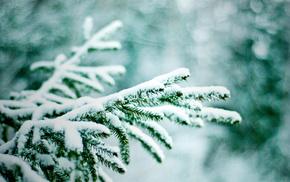 bokeh, nature, snow, twigs, Christmas tree